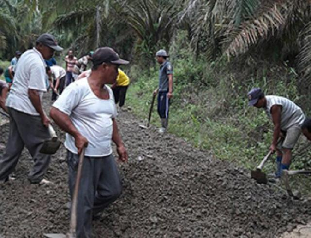 Pembangunan Jalan di Inhil Mudahkan Petani Angkut Hasil Panen