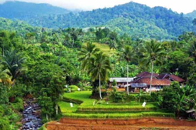 Perusahaan Diminta Berpartisipasi Untuk Pembangunan Desa