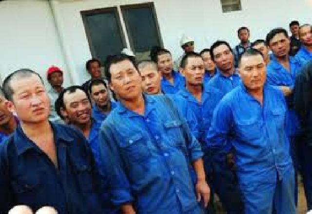 Terdata  97 orang Tenaga Kerja Asing bekerja di Pekanbaru