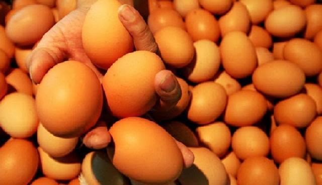 Tahun Baru Harga Telur Melambung Tinggi