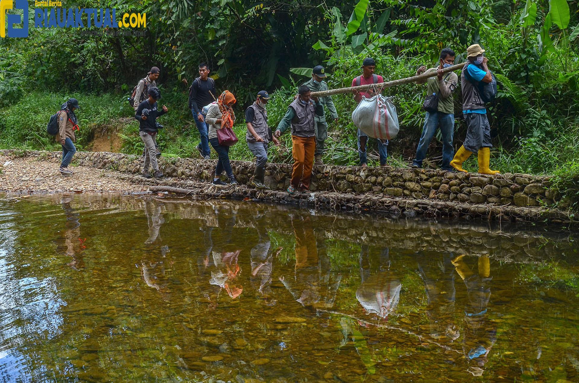 Posisi Pekerjaan Ini Dapat Gaji Paling Tinggi di Indonesia