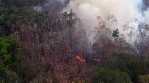 Pagi ini 1 Hotspot Terpantau di Provinsi Riau